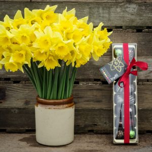 40-Brooksgrove--daffodils-and-16-Trwffls