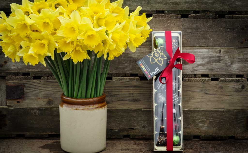 40 Brooksgrove daffodils and 16 Trwffls