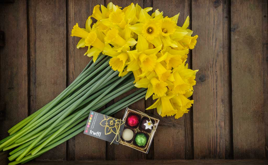 40 stems of golden daffodils and 4 handmade truffles