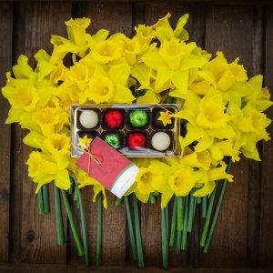 40-Brooksgrove-Daffodils-and-8-Truffles